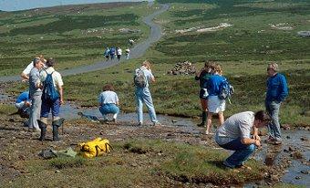 Freshwater survey